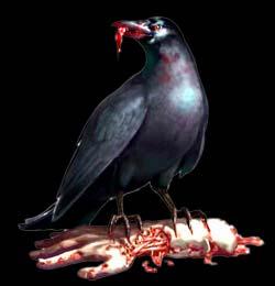 Biohazard (Resident Evil) Re_corbeau